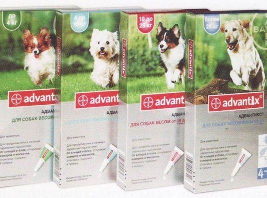 средства для собак от клещей