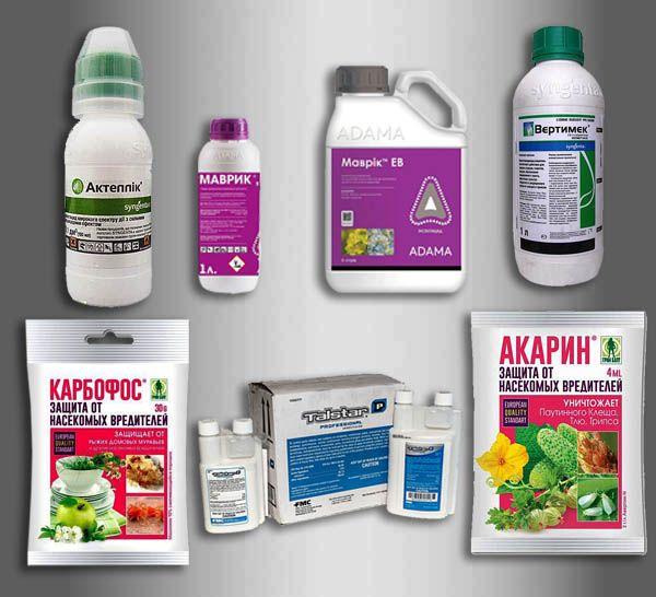 Обзор видов акарицидных препаратов: классификация, как действует, время действия, побочные действия