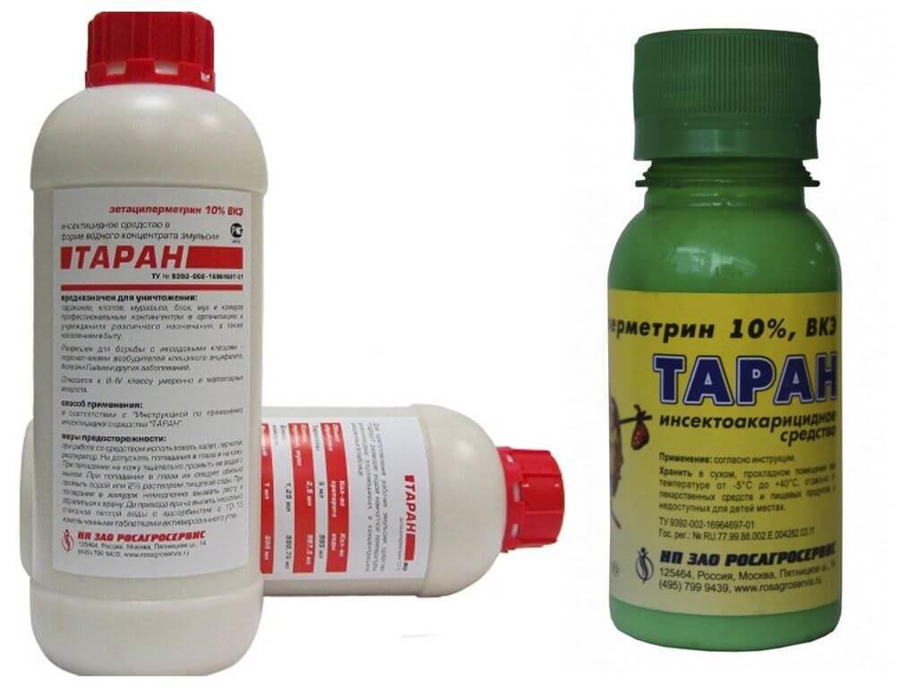 Подробный обзор технологии проведения обработки участка от клещей и комаров: когда нужно, какими препаратами, сколько действует, инструкция как сделать самому