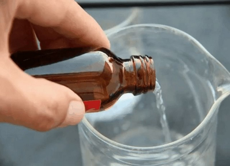 Пошаговая инструкция по применению нашатырного спирта для уничтожения тараканов: правила, рецепты, принцип действия, отзывы