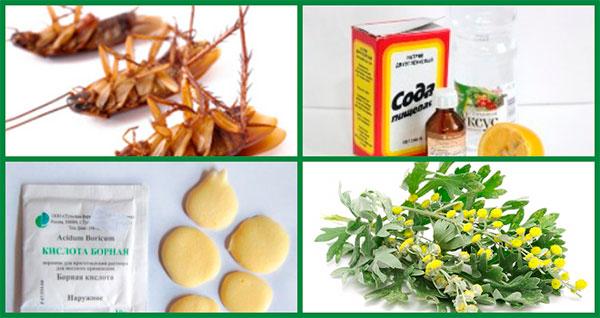 Подробное руководство по выбору и применению отравы от тараканов: лучшие препараты, народные методы