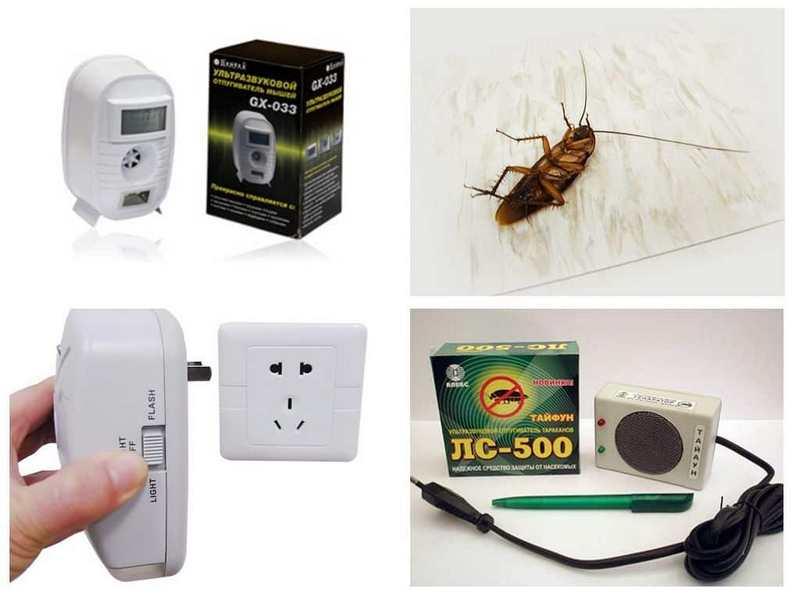 Обзор лучших ловушек для тараканов: рейтинг лучших, описание, как действуют, преимущества, пошаговая инструкция как сделать самому