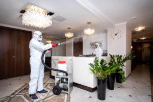 Профессиональные услуги по дезинфекции - почему они важны и как их использовать?
